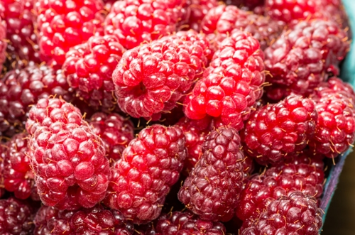 Anti Aging Foods For Skin Red Berries