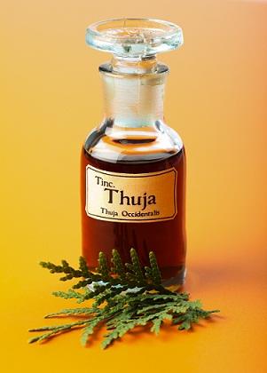 dr batras hair loss treatment - thruja