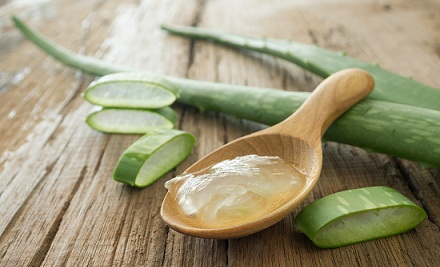 Aloe Vera Can Make Your Hair Long