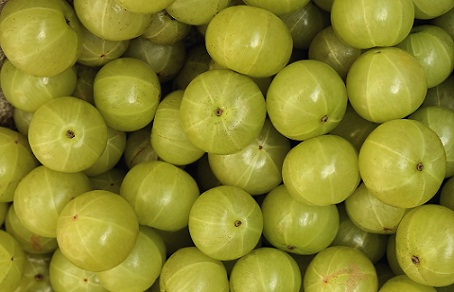 Amla for premature hair greying