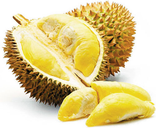 Fruits for Weight Loss - Durian