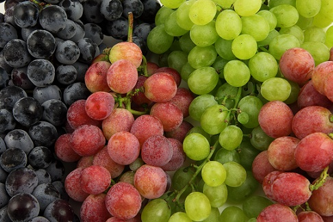 Grapes for gs