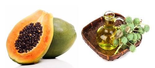 Homemade Face Packs for Dry Skin-Papaya and Castor oil Face Pack