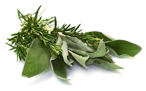How to Reduce White Hair - Rosemary and sage