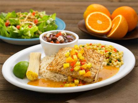 Ketogene Ernährung Vorteile Risiken und alles was Sie darüber wissen müssen