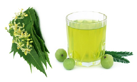 Neem, Ground rice and Gooseberry Extracts Face Pack