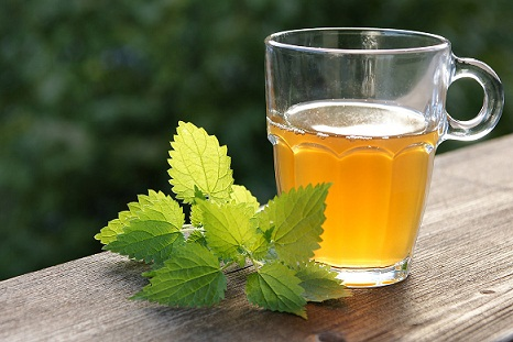 Nettle Tea For Damaged Hair