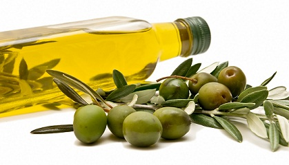 Olive Oil for Straighten Your Curly Hair