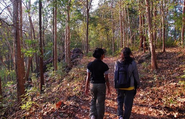 parks-in-karnataka_dandeli-wildlife-sanctuary