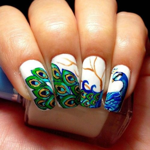 top 9 peacock nail art designs styles at life