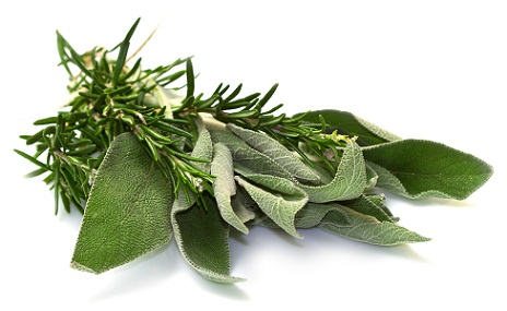Rosemary and sage to prevent premature hair greying