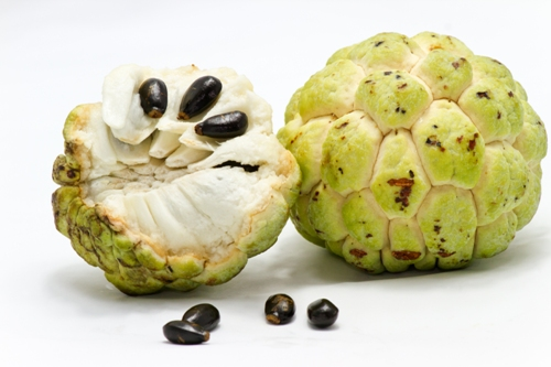 consuming custard apple sitaphal during pregnancy  all