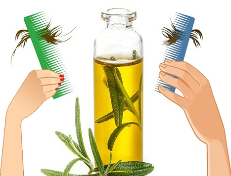 olive-oil-for-hair-loss
