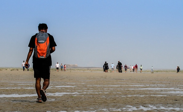 parks-in-gujarat-marine-national-park-and-sanctuary