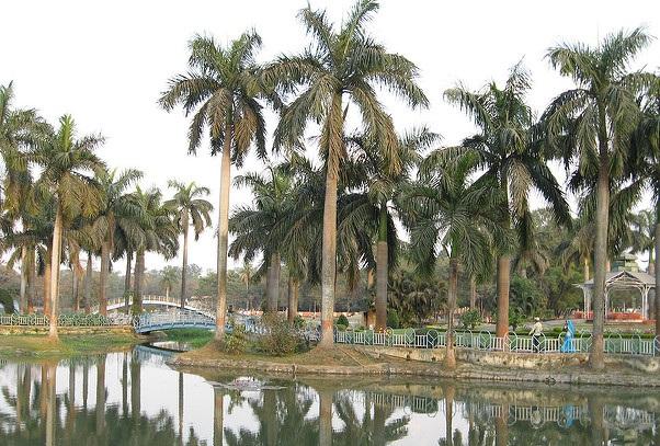parks-in-jharkhand-bokaro-city-park