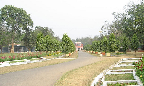 parks-in-jharkhand-jawaharlal-nehru-biological-park