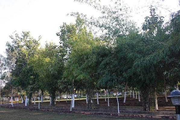 parks-in-jharkhand-nakshatra-van