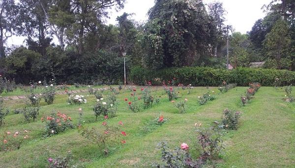 parks-in-odisha-indira-gandhi-park