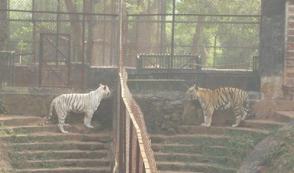 parks in Orissa