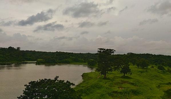 parks-in-tripura-trishna-wildlife-sanctuary