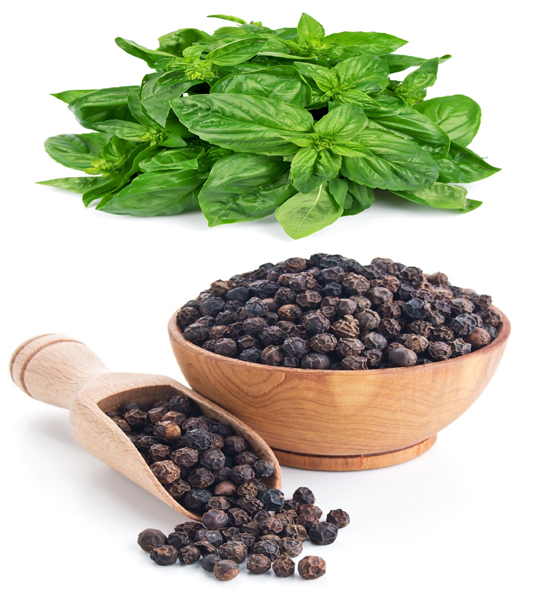 Black Pepper and Basil Leaves