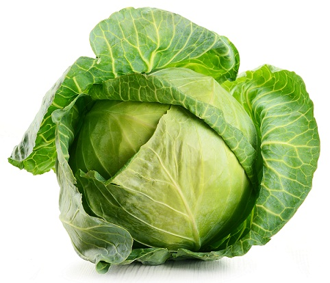 Cabbage for obesity