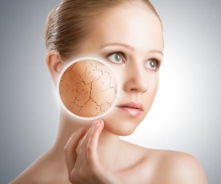 homemade moisturizers for dry skin