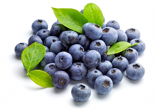 Fruit Diet Plan for Weight Loss - Blueberries