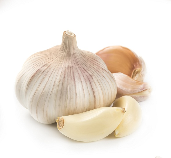 Garlic 5