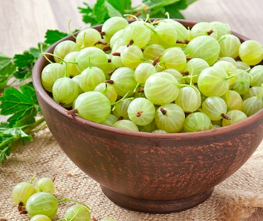 gooseberry-for-hair-fall
