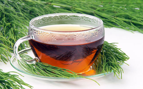 Home Remedies For Kidney Stones Horsetail tea