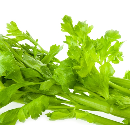 Home Remedies For Kidney Stones celery