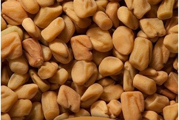 fenugreek for weight loss