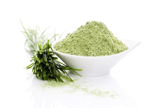 Wheatgrass home remedies for kidney stones