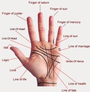 Palm Astrology