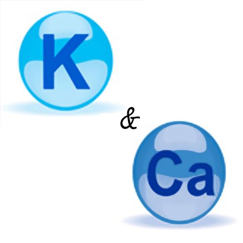 vitamin ca and k 1