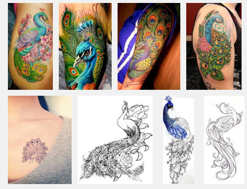 best-peacock-tattoo-designs-and-meanings