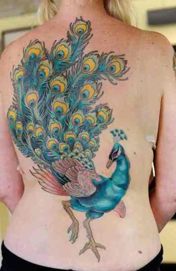 Peacock tattoo designs 7
