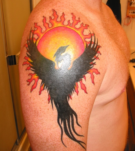 Phoenix in building Tattoo