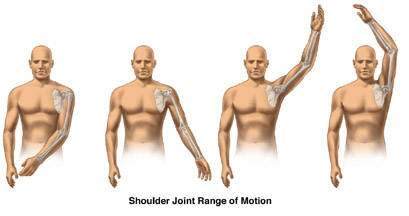 Shoulder Motions