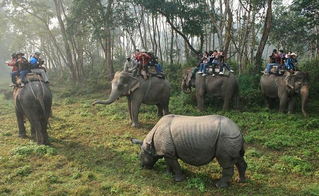 chitwan-national-park_nepal-tourist-places