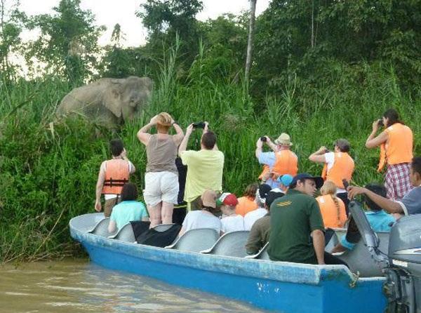 kinabatangan-river_malaysia-tourist-places