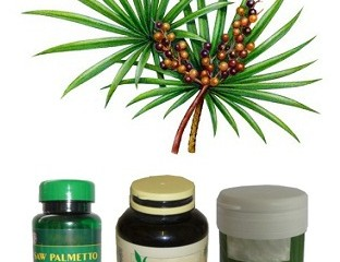 Saw Palmetto for Hair