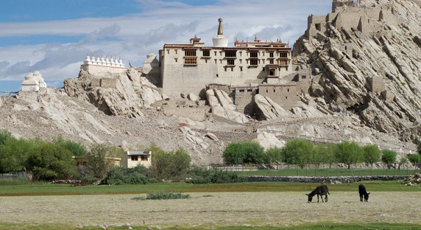 shey-palace_ladakh-tourist-places