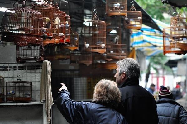 bird-garden_hong-kong-tourist-places