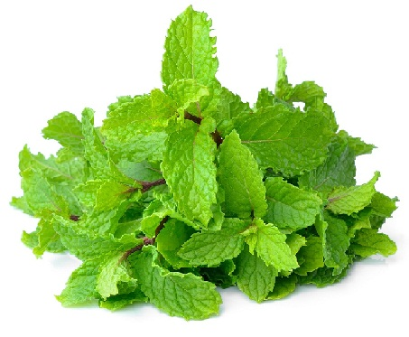 How to Remove Pimples from Face-mint leave