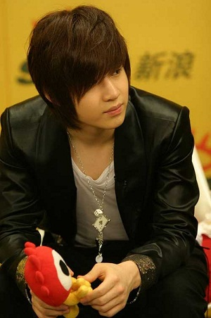 Emo Hairstyles for Guys 12