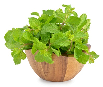 How to Remove Pimple in One Day-Peppermint Leaves
