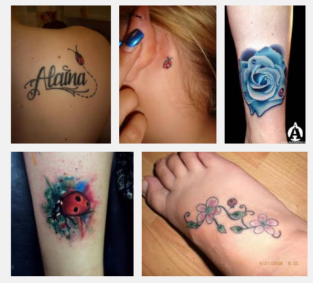 d1f77e1d49372 Top 9 Lady Bug Tattoo Designs And Meanings | Styles At Life