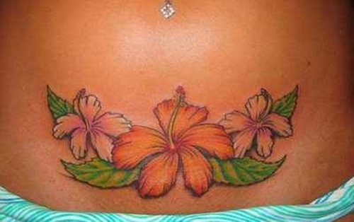 hibiscus-flower-8